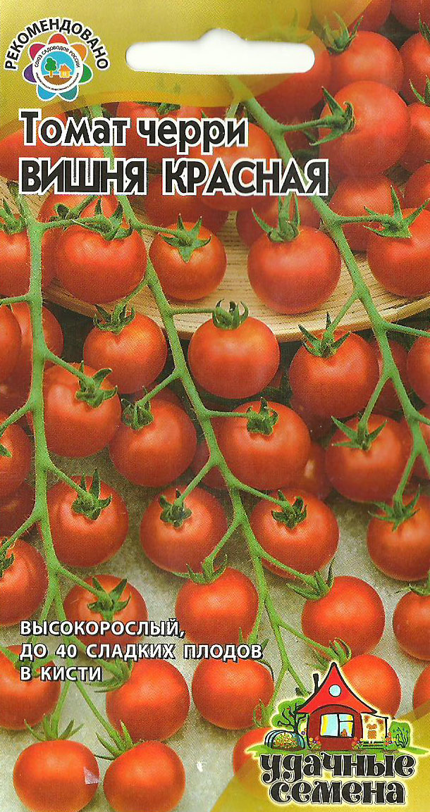 Когда сажают помидоры черри 394